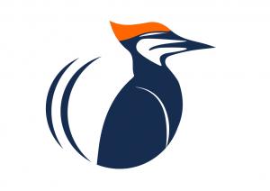 okyl_logo